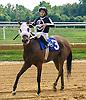 Angel Falls winning at Delaware Park on 9/10/16