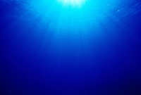 A sunburst shines thru the clear blue  waters of Hawaii.