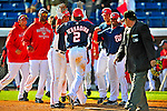 3 March 2009: Washington Nationals' center fielder Roger Bernadina is met by teammates at home plate after hitting a walk-off, 3-run homer in the bottom of the ninth during a Spring Training exhibition game against Italy at Space Coast Stadium in Viera, Florida. The Nationals defeated Italy 9-6. Mandatory Photo Credit: Ed Wolfstein Photo