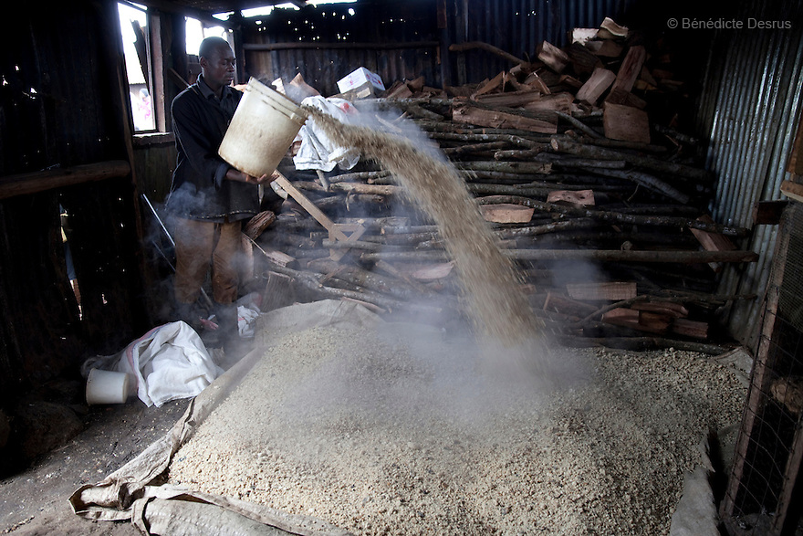 A Kenyan man prepares the maize for the Busaa, a traditional fermented beer, at the Madiaba Busaa Club in a Nairobi slum on March 27, 2013. Busaa is made by crudely fermenting maize, millet, sorghum or molasses. At Kshs 35 per liter it is much cheaper than a Kshs120 half-liter bottle of commercial beer. The local brew was legalised in 2010 and since then busaa clubs have become increasingly popular. Drinking is on the rise in Kenya, especially among young people. Photo by Benedicte Desrus