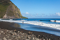 Surfers and bodyboarders at the black sand beach in Waipi'o Valley, Big Island.