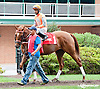 Mia Bee A before The Forever Together Stakes at Delaware Park on 9/11/13