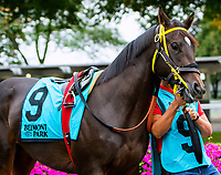 OCTOBER 8, 2018: Jazzy J the Matron Stakes at Belmont Park on October 8, 2018 in Elmont, NY.  Sue Kawczynski/ESW/CSM
