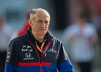 FRANZ TOST (AUT) (RED BULL TORO ROSSO HONDA) Team principal during the Formula 1 Rolex British Grand Prix 2019 at Silverstone Circuit, Towcester, England on 14 July 2019. Photo by Vince  Mignott.