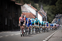 peloton <br /> <br /> 99th Brussels Cycling Classic 2019<br /> One Day Race: Brussels > Brussels 189.4km<br /> <br /> ©kramon
