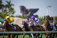HALLANDALE, FL - JANUARY 28: The horses for the 4th race past the Pegasus status first time past the grandstand at Gulfstream Park on January 28, 2017 in Hallandale Beach, Florida. (Photo by Zoe Metz/Eclipse Sportswire/Getty Images)