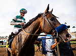 AUG 17: Higher Power with groom Alex Escobar after winning the TVG Pacific Classic Stakes at The Del Mar Thoroughbred Club in Del Mar, California on August 17, 2019. Evers/Eclipse Sportswire/CSM