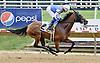 Virginia Ann winning at Delaware Park on 8/9/14
