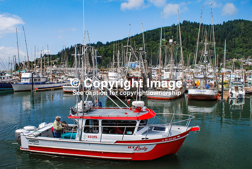 Garibaldi, fishing port, marina, Oregon, USA, 200808310741..Copyright Image from Victor Patterson, 54 Dorchester Park, Belfast, N Ireland, BT9 6RJ...Tel: +44 28 9066 1296.Mob: +44 7802 353836.Email: victorpatterson@mac.com..IMPORTANT - Please visit www.victorpatterson.com and click on Terms & Conditions