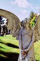 Portraits: Angels