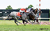 High Intense winning at Delaware Park on 7/19/14