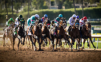 ARCADIA, CA -APRIL 08: Gormley #8, ridden by Victor Espinoza defeats Battle of Midway #3 with Corey Nakatani to win the Santa Anita Derby at Santa Anita Park on April 08, 2017 in Arcadia, California. (Photo by Alex Evers/Eclipse Sportswire/Getty Images)