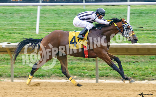 One Step Closer winning at Delaware Park on 9/24/16