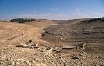 Jordan, landscape near Madaba&amp;#xA;<br />