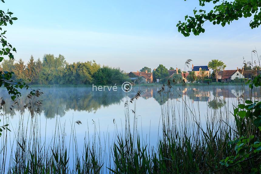 France, Loir-et-Cher (41), Sologne, Saint-Viâtre, étang de la ville le matin // France, Loir et Cher, Sologne, Saint Viatre, pond of the town in the morning