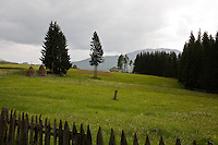 ROMANIA / Transylvania / Tihuta Pass / 30.05.2007 / ..Near the Tihuta Pass, site of the fictional castle in Bram Stoker's novel 'Dracula'. ..© Davin Ellicson / Anzenberger