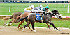 Rocky Policy winning at Delaware Park on 8/23/14