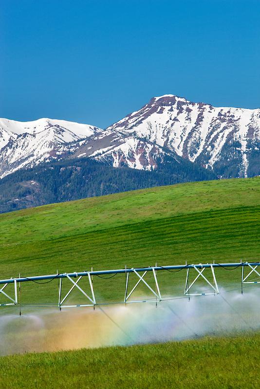 Irrigation wheel in pasture with rainbow and wallowa Mountains. Wallowa County, Oregon