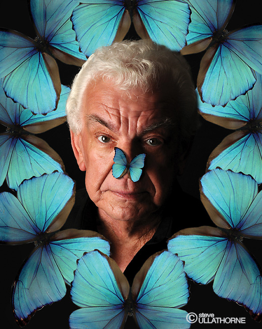 Barry Cryer. Butterfly Brain poster image