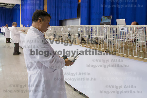 Judges inspect birds during the 34th Pigeon Olympiad held in Budapest, Hungary on January 15, 2015. ATTILA VOLGYI