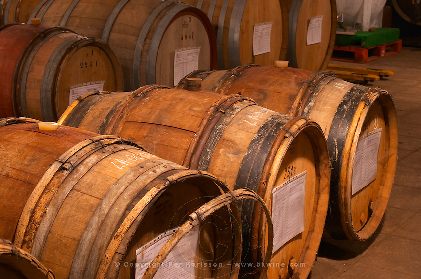 In the Chapoutier winery. The special storage room for spirits, marc, fine, with old wooden barrels and vats. Chapoutier is one of the few who still have the right to distil alcohol. Domaine M Chapoutier, Tain l'Hermitage, Drome Drôme, France Europe