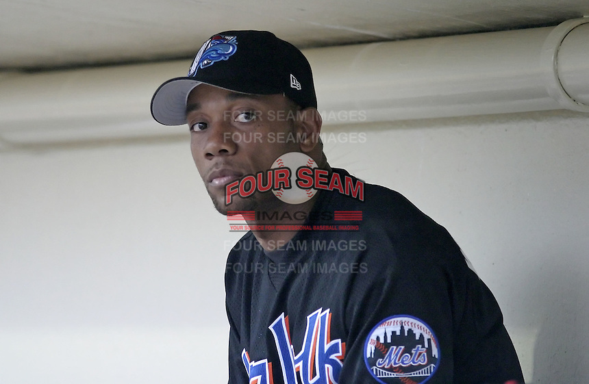 May 26, 2004:  Gerald Williams of the Norfolk Tides, Triple-A International League affiliate of the New York Mets, during a game at Frontier Field in Rochester, NY.  Photo by:  Mike Janes/Four Seam Images
