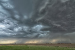 Dramatic storm clouds over a field with a lightning bolt, Saskatchewan.