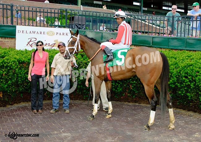 Put It Back Martha winning at Delaware Park racetrack on 6/5/14