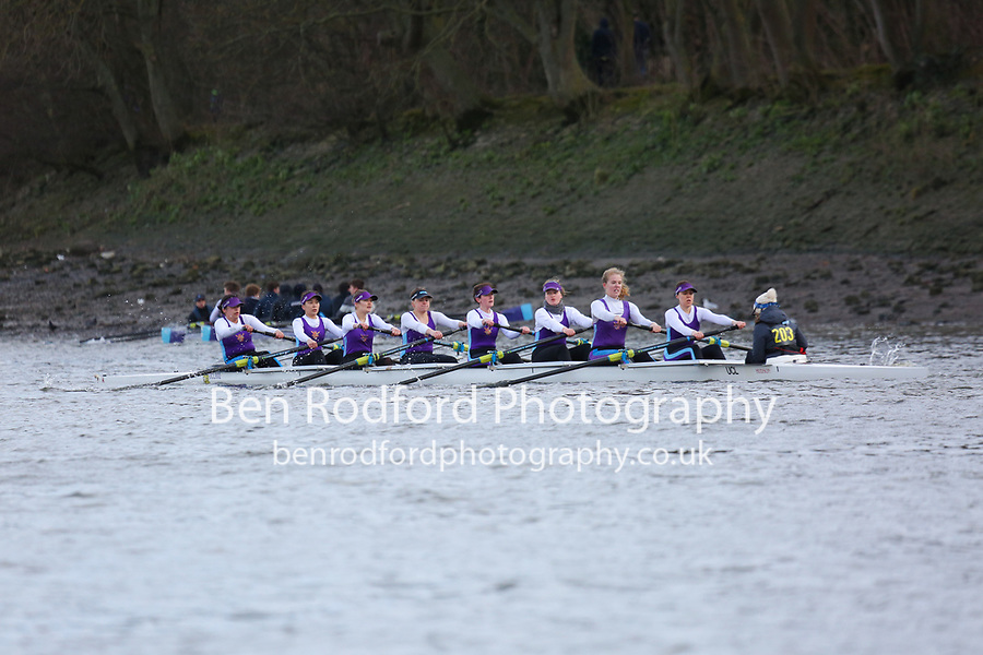Crew: 203   University College London (Riggall)   W Inter<br /> <br /> Quintin Head 2019<br /> <br /> To purchase this photo, or to see pricing information for Prints and Downloads, click the blue 'Add to Cart' button at the top-right of the page.