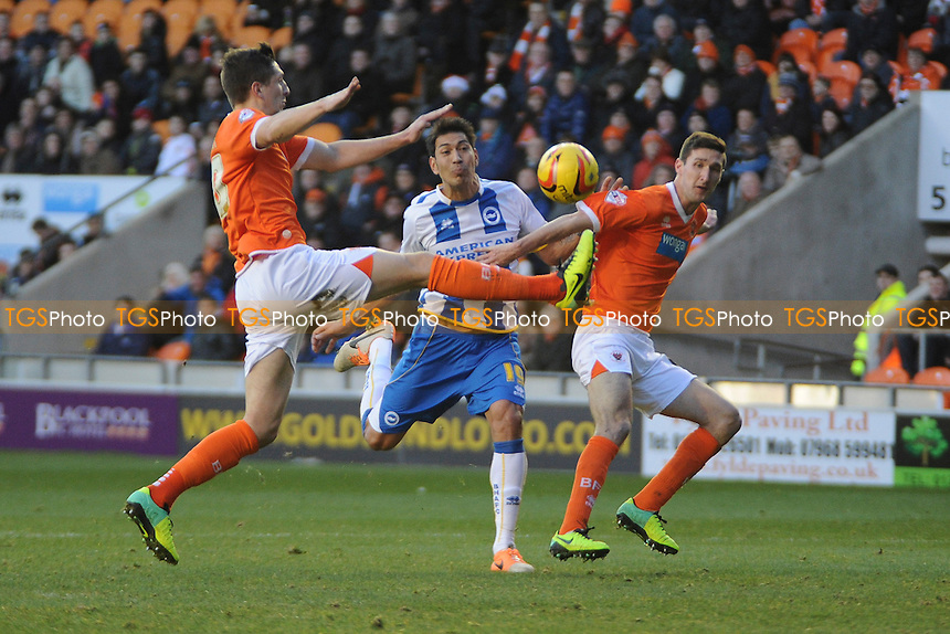 Craig Cathcart  and Chris Basham of Blackpool block Leonardo Ulloa of Brighton and Hove Albion  - Blackpool vs Brighton & Hove Albion - Sky Bet Championship Football at Bloomfield Road, Blackpool, Lancashire - 29/12/13 - MANDATORY CREDIT: Greig Bertram/TGSPHOTO - Self billing applies where appropriate - 0845 094 6026 - contact@tgsphoto.co.uk - NO UNPAID USE