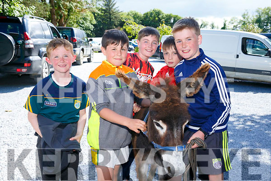 Enjoying the Old Time Fair at Glenduff Manor on Saturday were Gearoid O Connor, Mark Chalk, Micheal O'Connor, Kieran O'Connell and Conor Savage