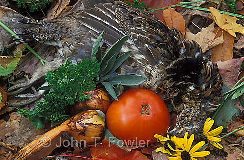 Ruffed grouse with vegetables for cooking