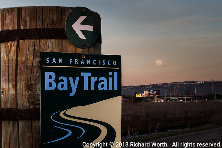 Twelve hours and seven minutes before it will be the Full, Blue and Blood moon, this gibbous moon rises over the East Bay hills, viewed from a spot along the San Francisco Bay Trail.