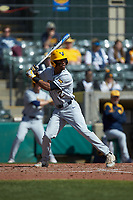 Tevin Tucker (2) of the West Virginia Mountaineers at bat against the Illinois Fighting Illini at TicketReturn.com Field at Pelicans Ballpark on February 23, 2020 in Myrtle Beach, South Carolina. The Fighting Illini defeated the Mountaineers 2-1.  (Brian Westerholt/Four Seam Images)