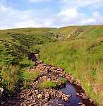 Tributary near its source, River Tyne south, northern Pennines, England