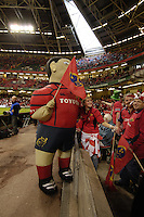 Cardiff, WALES.  Munster mascot before   the  2006 Heineken Cup Final,  Millennium Stadium,  between Biarritz Olympique and Munster,  20.05.2006. © Peter Spurrier/Intersport-images.com,  / Mobile +44 [0] 7973 819 551 / email images@intersport-images.com.   [Mandatory Credit, Peter Spurier/ Intersport Images].14.05.2006   [Mandatory Credit, Peter Spurier/ Intersport Images].