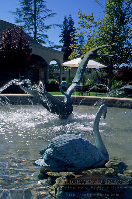 Fountain at Sebastiani, Downtown Sonoma, Sonoma County, California
