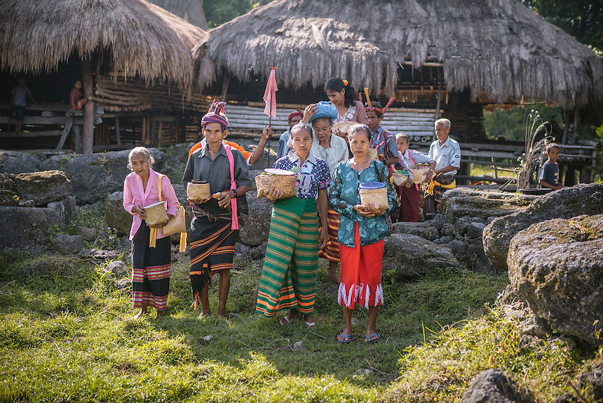 The village elders gather around old megalith tombs in the village of Tosi, Kodi, to do a ritual for the ancestors before the Pasola begun. For many of the the Sumbanese, who still believe in the ancient animism called Marapu, the day around Pasola is considered holy. And many of them came from faraway village in Sumba to watch Pasola. Pasola is an ancient tradition from the Indonesian island of Sumba. Categorized as both extreme traditional sport and ritual, Pasola is an annual mock horse warfare performed in response to the harvesting season. In the battelfield, the Pasola warriors use blunt spears as their weapon. However, fatal accident still do occurs.