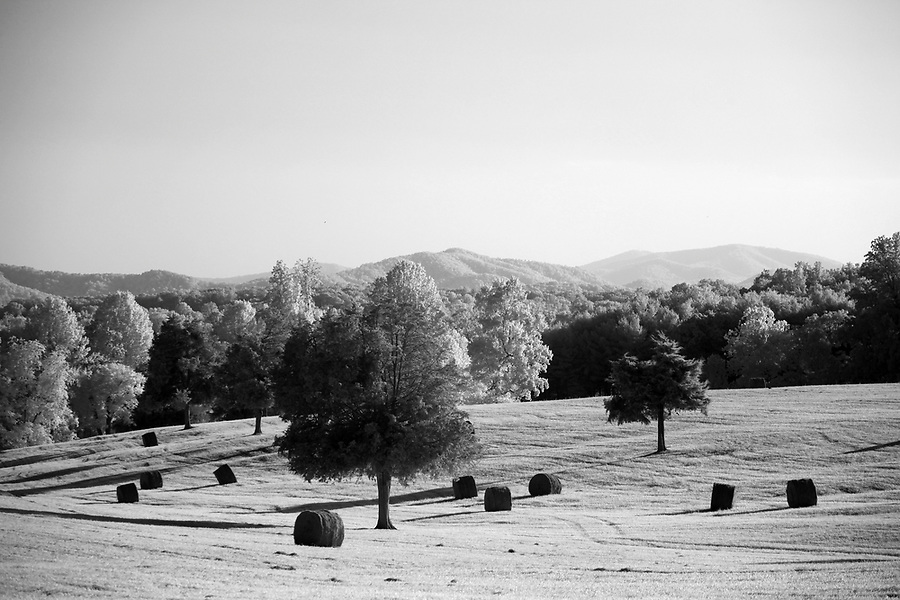 Louisa County, Virginia photographed in infrared. Photo/Andrew Shurtleff