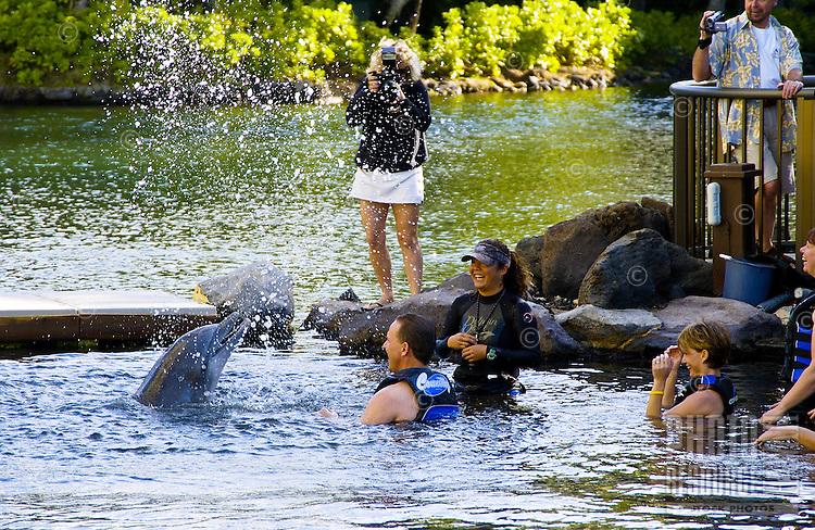People swimming with dolphins Kahala Mandarin Hotel & Resort