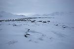 village de Qikiqtarjuaq
