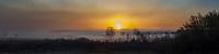 Sunrise lights up the fog at Phyllis Haehnle Memorial Sanctuary in Jackson County, Michigan