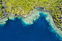 aerial view of a remote limestone island, fringed by a beautiful coral reef, Raja Ampat Islands, West Papua, Indonesia, Pacific Ocean