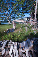 Wood Pile and Cabin, Sheep Island, Castine, Maine, US