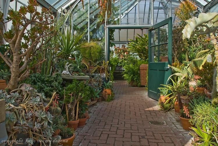 Cactus Room Biltmore Conservatory