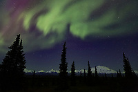 View from Wonder Lake Campground, Denali National Park, Interior, Alaska