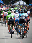 August 11, 2017 - Breckenridge, Colorado, U.S. -   The main peloton pedals into huge crowds atop the Moonstone climb during the second stage of the inaugural Colorado Classic cycling race, Breckenridge, Colorado.