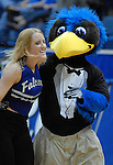 February 13, 2010:  Air Force Falcon mascot and Academy Dance Team member during Mountain West Conference action against the BYU Cougars at Clune Arena, U.S. Air Force Academy, Colorado Springs, Colorado.  BYU defeats Air Force 78-53.