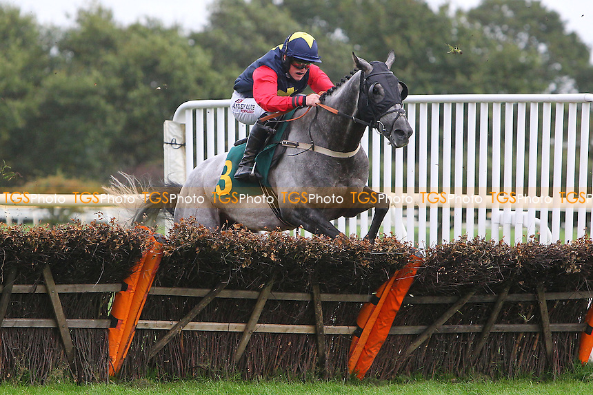 Races winner Persian Herald ridden by Trevor Whelan in jumping action during the Pudding Norton Conditional Jockeys Selling Handicap Hurdle - National Hunt Horse Racing at Fakenham Racecourse, Norfolk - 25/10/13 - MANDATORY CREDIT: Gavin Ellis/TGSPHOTO - Self billing applies where appropriate - 0845 094 6026 - contact@tgsphoto.co.uk - NO UNPAID USE