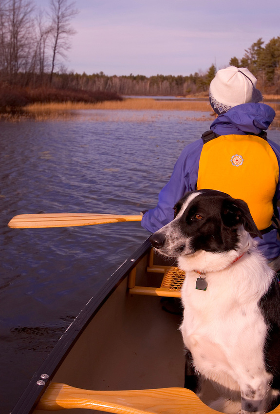 A canoeist and her dog paddle Harlow Lake near Marquette, Mich. in fall.